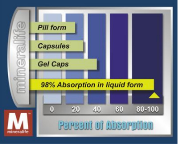 ABSORPTION COMPARISON